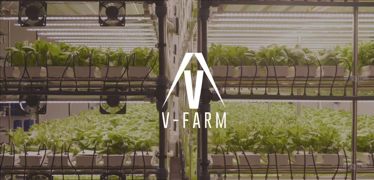 V-Farm Case Study